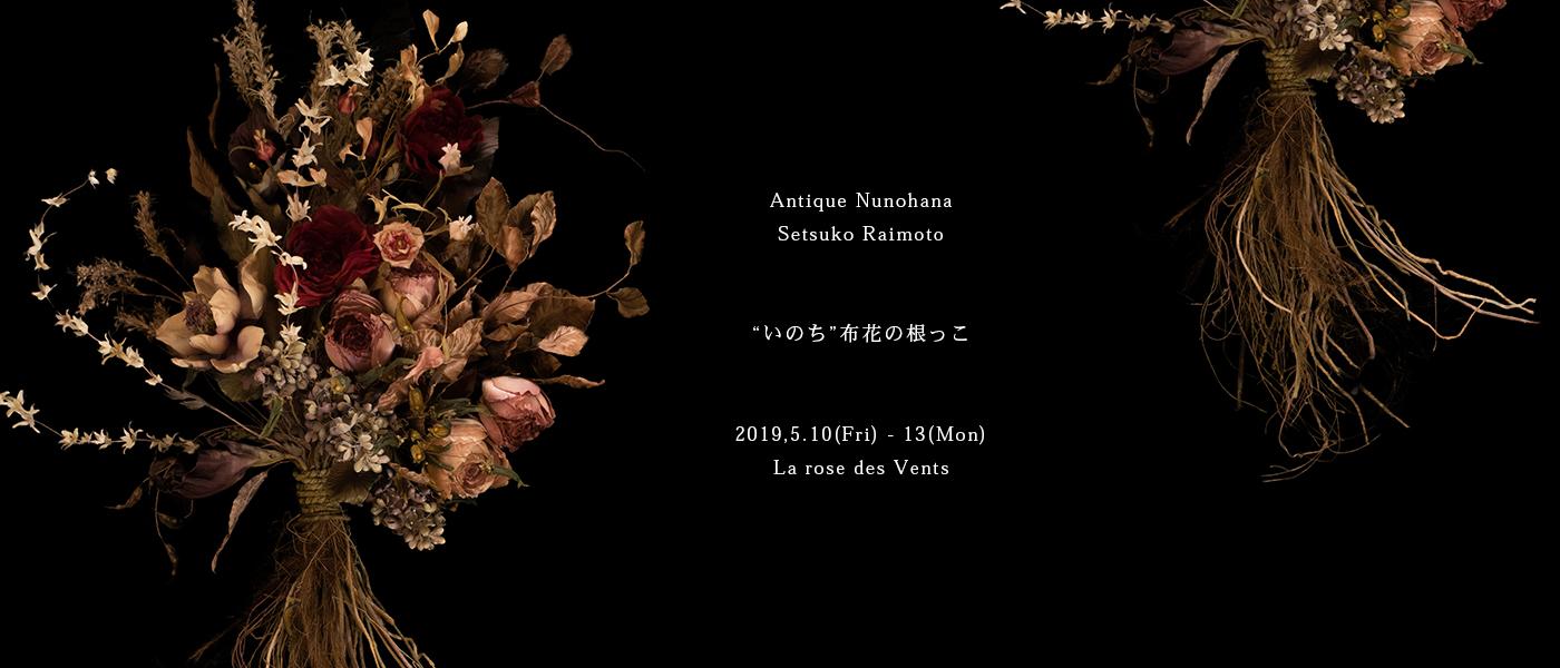 布花の根っこ2019
